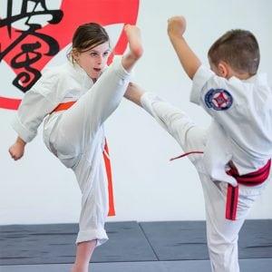 rma total fitness little dragons kyokushin having fight demonstration