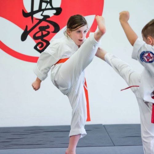 rma total fitness little dragons kyokushin having fight demonstration